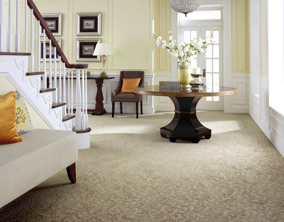 Carpet & Rug Cleaning West Palm Beach FL