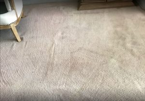 Carpet Stain Removal | West Palm Beach